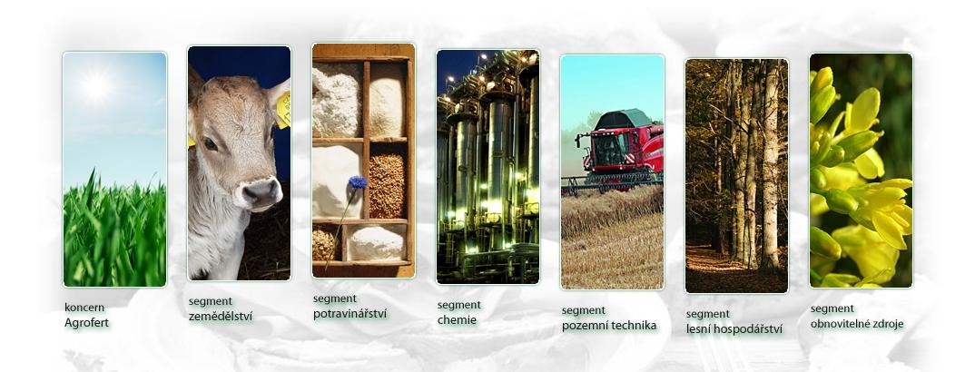 Agrofert - audit