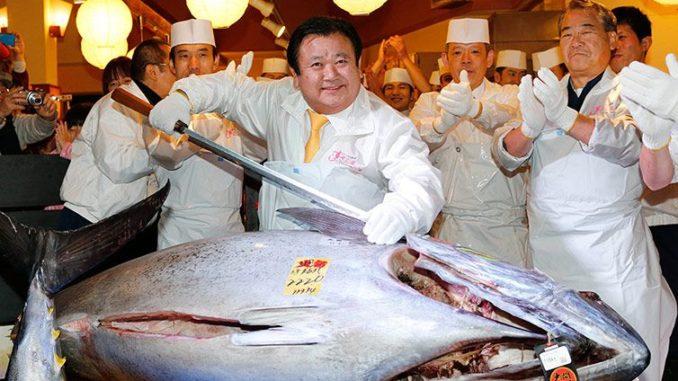 Japonská aukce tuňáka obecného - nejdražší exemplář z roku 2013